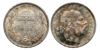 1 Korona 1893