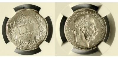 1 Korona 1895 NGC