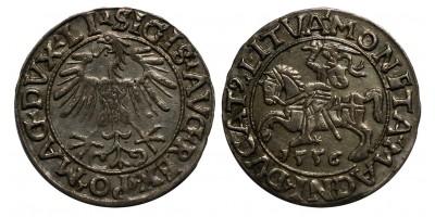 Lengyelország I. Zsigmond 1/2 garas 1556 Vilnius